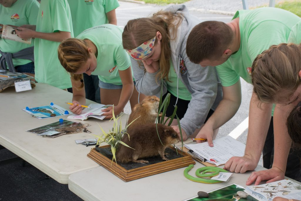 wildlife-testing